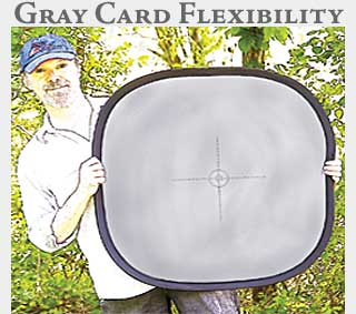 M2 Online Learning Gray Card