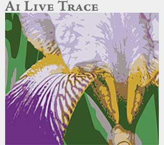 M2 Online Learning Adobe Illustrator Live Trace