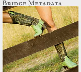 M2 Online Learning Adobe Bridge Metadata