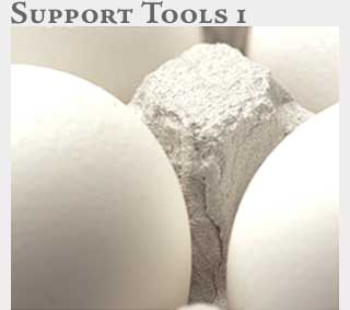 M2 Online Learning Support Tools 1