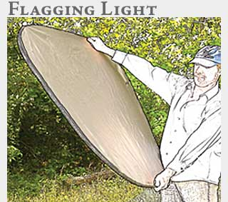 M2 Online Learning Flagging Light