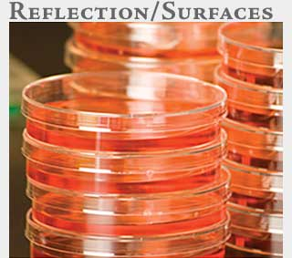 M2 Online Learning Reflections+Surfaces