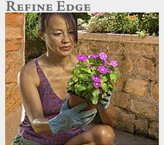 M2 Media Online Learning Photoshop Refine Edge