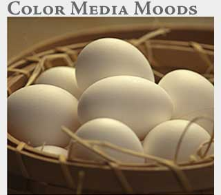 M2 Media Online Learning Color Media Moods