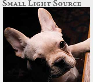 M2 Media Online Learning Small Light Source